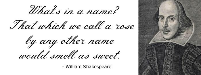 shakespeare quote 2