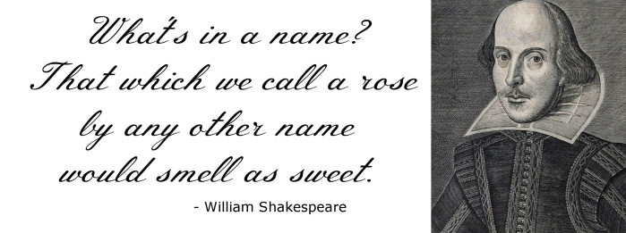 shakespeare quote 2